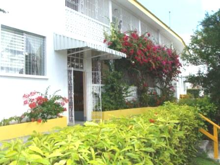The entrance of the Adulo Apartments with a colourful display of bourganvillia. The lovely apartments are privately run