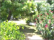 Another view of the gardens at Adulo Apartments